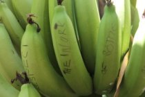 Bananas are now a symbol of hope