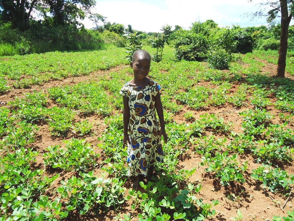 Jesca and her family now grow other crops too - here she is standing in the family's ground nuts garden