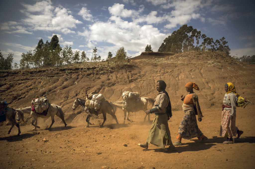 Caption: Community members from Adberwelia, Ethiopia travel to a market in the town of Kibet. Photo by Jake Lyell. tag = women group walking outdoors animals donkey horse sky clouds Original: Villagers in Adberwelia, Ethiopia descend to the town of Kibet with their horses and donkeys where a weekly market is held. .Ethiopia - January 30, 2014.ChidlFund Australia - Photo by Jake Lyell